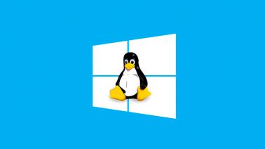 Agora você pode baixar o Linux pela loja do Windows